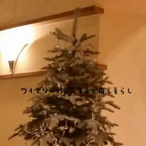 2016-12-25_13-23-14