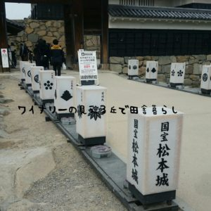 inaka-winary-matumoto-castle13