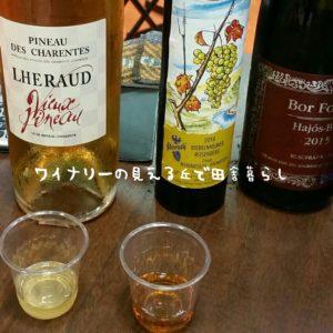 wineryhills_20170710-shiin02