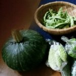 かぼちゃの植え付け・収穫について