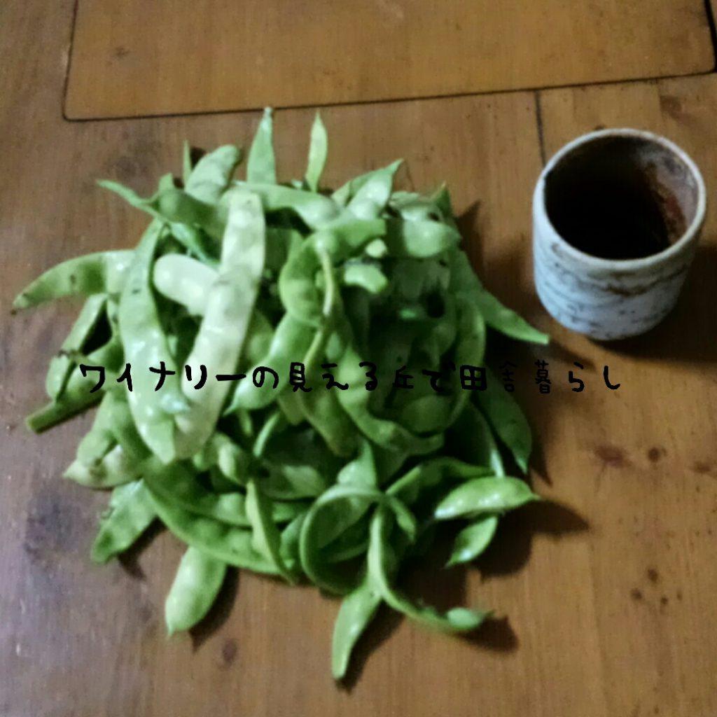 8月27日の収穫はシンプルでした。