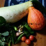 10月2日本日の収穫~せっかちな母についてきた畑~