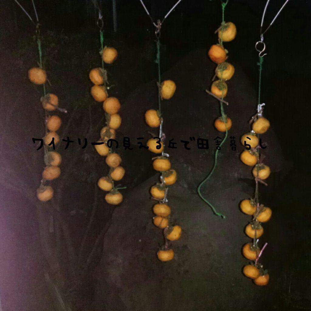 10月4日の収穫はみょうがだけ。細々となる収穫が始まるのか?