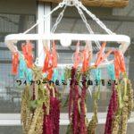 10月7日衝撃!アマランサスの実を乾かす方法。スイカももらいました。