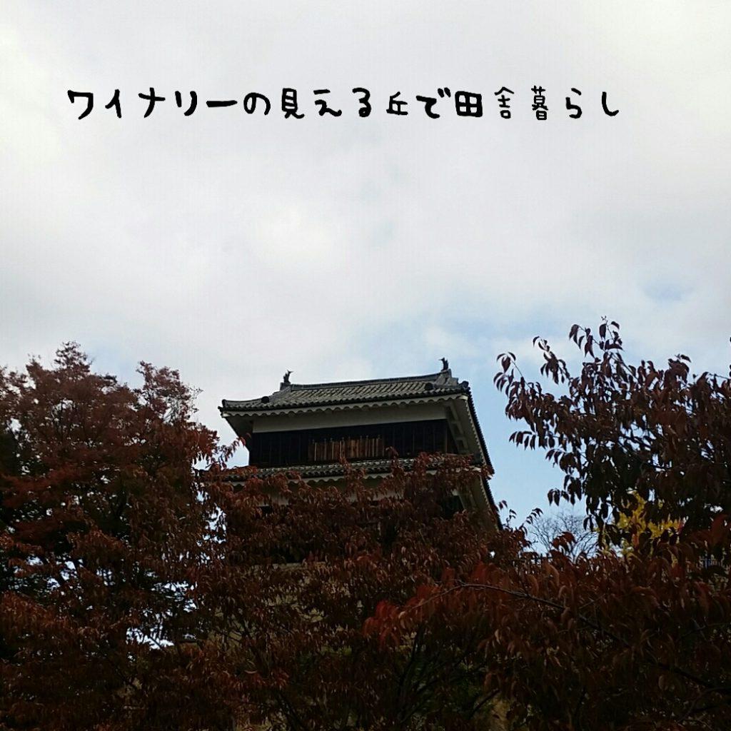 限定御朱印をもらいに行こう!真田神社に紅葉を見に行きました。