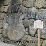 初詣に行こう!上田市近辺の初詣寺社仏閣3選!