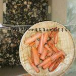 12月1日の収穫はキクイモとニンジン。