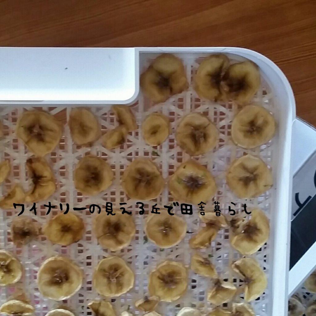 食品乾燥機でバナナチップを作ってみた!
