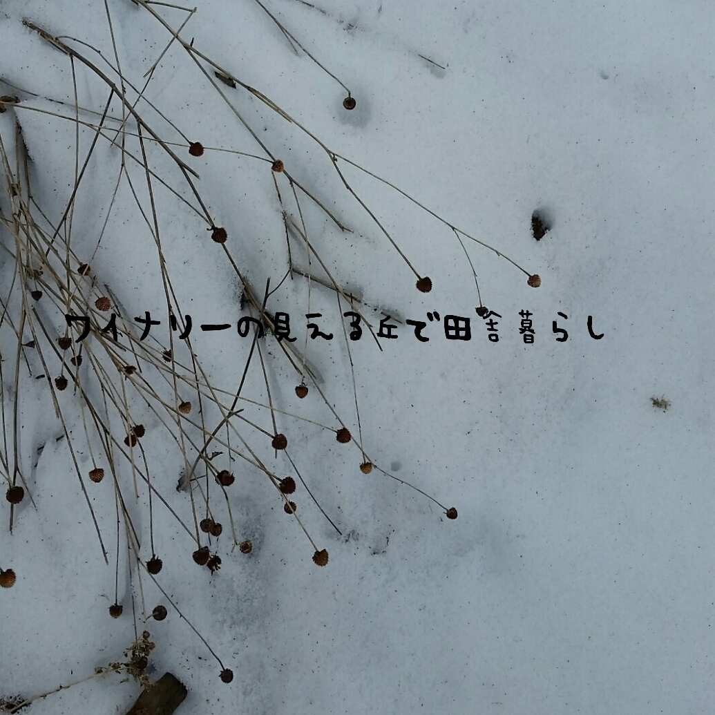 雪inaka-wineryhills_201702_04