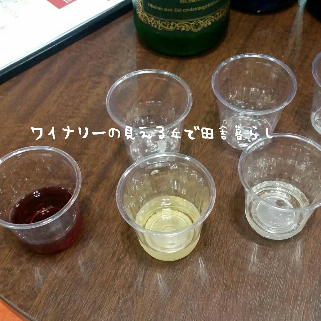 wineryhills_20170710-shiin03