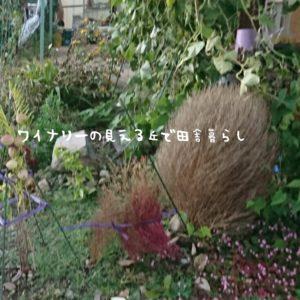 inaka-wineryhills_20171027_01_inaka-life