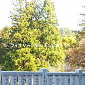 inaka-wineryhills_20171103_06_bessyo_onsen_kouyou