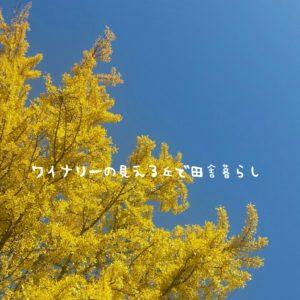 inaka-wineryhills_20171103_09_ueda_castle_kouyou