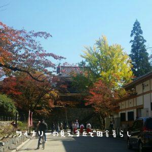 inaka-wineryhills_20171103_10_ueda_castle_kouyou