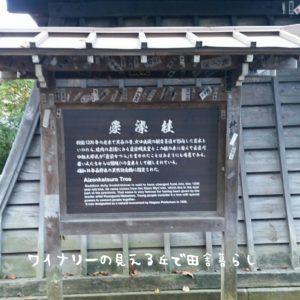 inaka-wineryhills_20171103_12_bessyo_onsen_kouyou