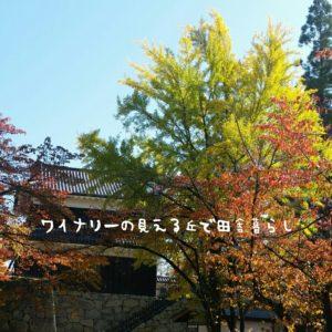 inaka-wineryhills_20171103_12_ueda_castle_kouyou