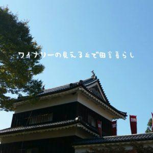 inaka-wineryhills_20171103_13_ueda_castle_kouyou
