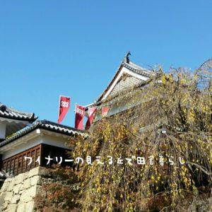 inaka-wineryhills_20171103_14_ueda_castle_kouyou