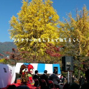inaka-wineryhills_20171103_15_ueda_castle_kouyou