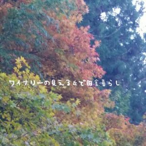 inaka-wineryhills_20171103_17_bessyo_onsen_kouyou
