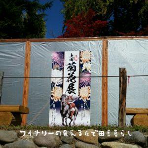 inaka-wineryhills_20171103_17_ueda_castle_kouyou