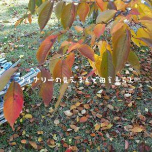 inaka-wineryhills_20171103_19_ueda_castle_kouyou