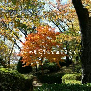 inaka-wineryhills_20171103_22_ueda_castle_kouyou