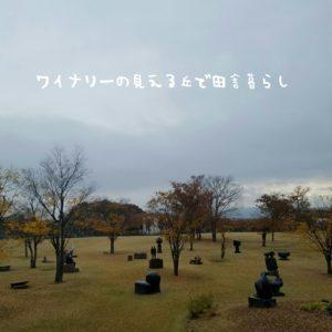 inaka-wineryhills_20171104_04_toumi_central_park_kouyou