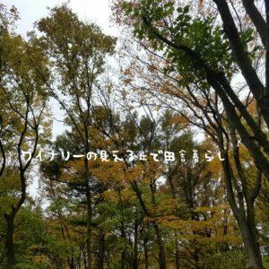 inaka-wineryhills_20171104_22_toumi_central_park_kouyou