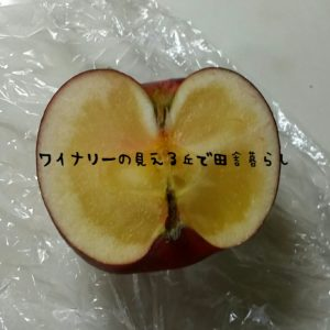 inaka-wineryhills_apple_touka02