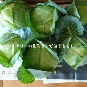 inaka-wineryhills_syukaku02_20170707