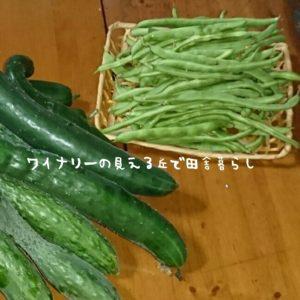 inaka-wineryhills_syukaku02_20170725