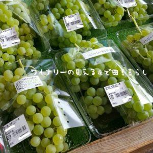 inaka-wineryhills_20180813-14raiden_03-min