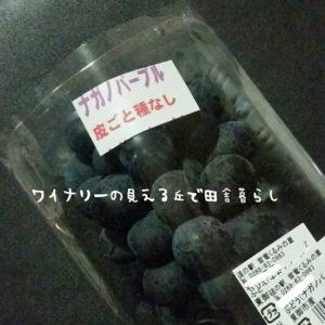 ごはんジャパンで知った、ナガノパープルが新しい品種ということ。