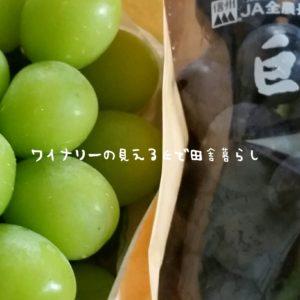 inaka-wineryhills_20180915_grapefes23-min