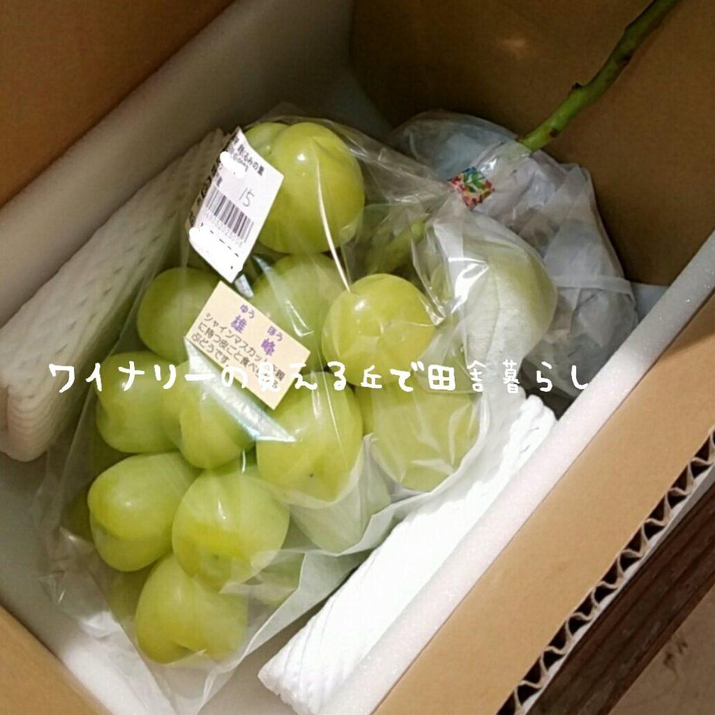 【最新】道の駅雷電でもぶどう祭り開催!