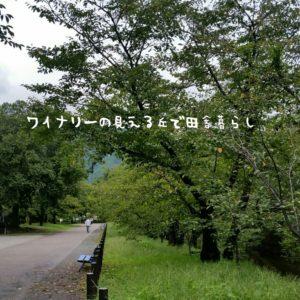 inaka-wineryhills_20180915_sanada12-min