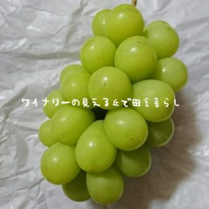 inaka-wineryhills_20180925_inaka03-min
