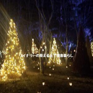 inaka-wineryhills_20181215_candle-karuizawachurch03-min