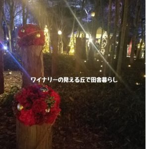 inaka-wineryhills_20181215_candle-karuizawachurch14-min