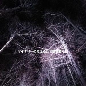 inaka-wineryhills_20181215_candle-karuizawachurch15-min