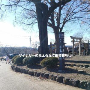 inaka-wineryhills_20190101_shiratorijinjya04-min