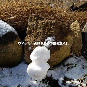 inaka-wineryhills_20190102_snow02-min