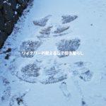 正月三が日から雪が降った!田舎暮らし地の楽しみ方。