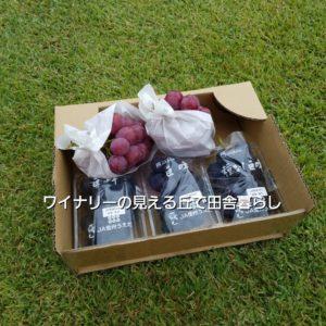 inaka-wineryhills_20190921_grapefes_kyohou