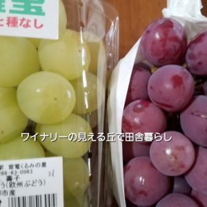 inaka-wineryhills_20190921_grapefes_red&green02